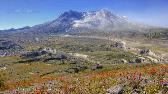 Mt. St. Helens, Washington
