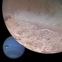 Triton Neptune montage