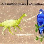 Living Birds Recapitulate Their Hopping Dino Ancestors