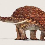 Most Armored Dinosaurs Found Upside Down