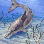 Two More Soft-Tissue Fossils Pile on the Evidence Against Deep Time